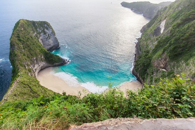 Manta bay or kelingking beach on nusa penida island, bali, indonesia Premium Photo