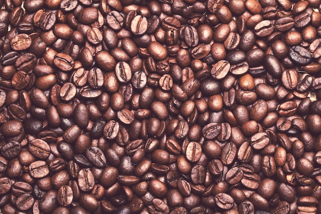 Many coffee beans on the table Free Photo
