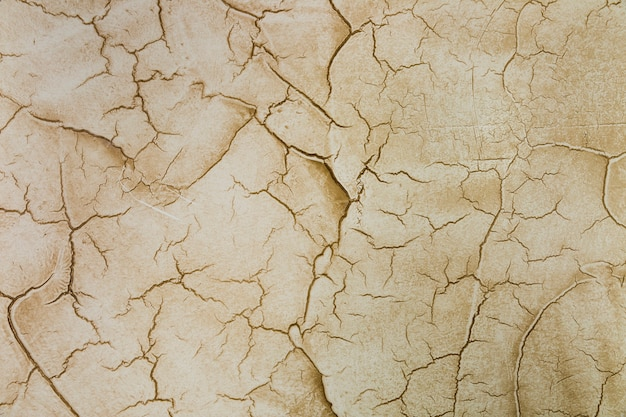 Many cracks in cement wall Free Photo