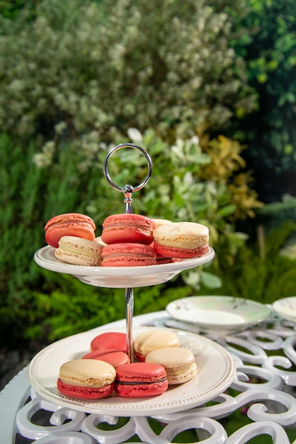 Many pink and white macaroon on plate set in the garden. sweet dessert. Premium Photo