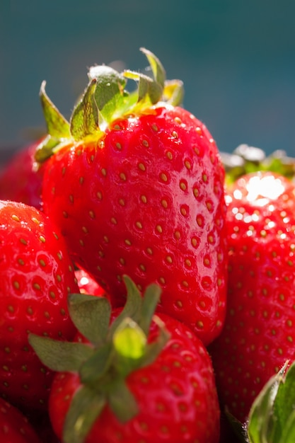 Many strawberries together Free Photo