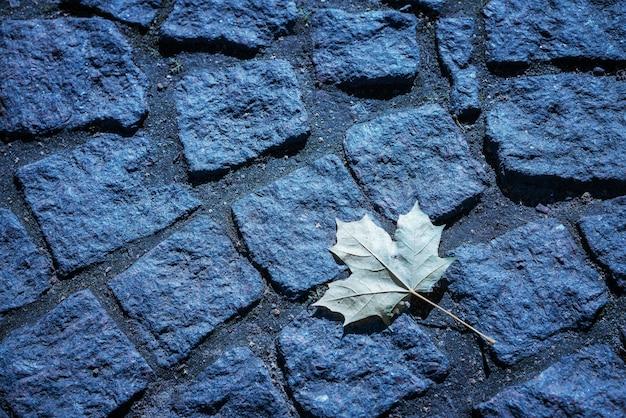 Foglia di acero su uno sfondo di strada di pietra nei toni del blu Foto Gratuite