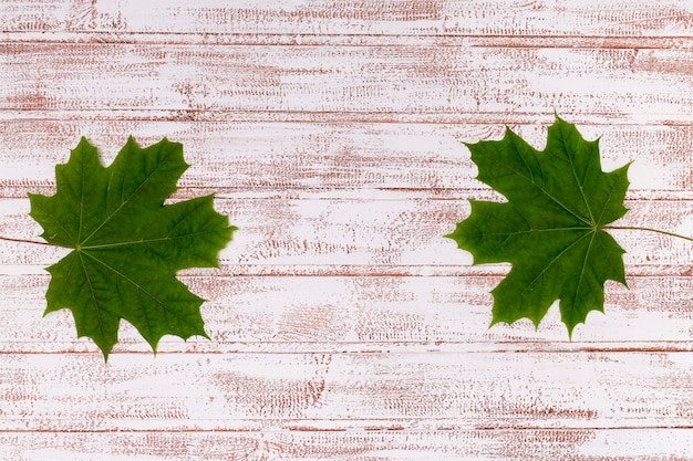 Maple leaves on wooden background copy space Free Photo