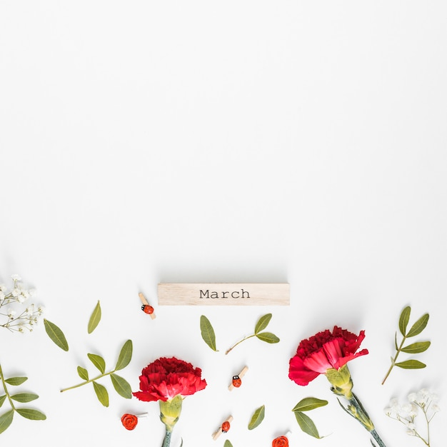 March inscription with carnation flowers Free Photo