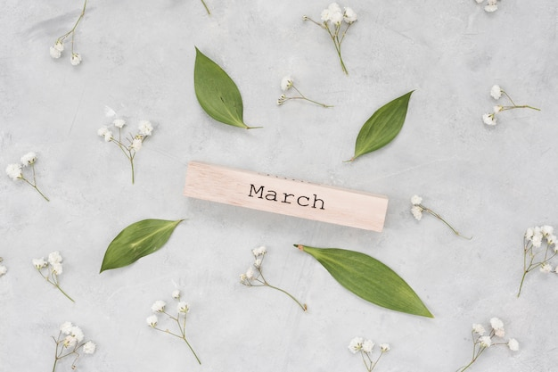 March inscription with leaves and flower branches Free Photo