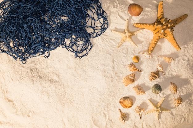 Marine shells and net on sand Free Photo