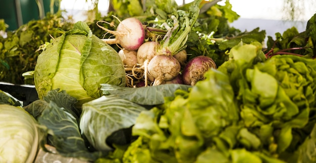 Market stall with variety of fresh organic vegetable Free Photo