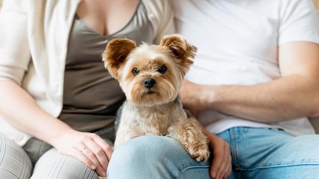 Супружеская пара и их собака Бесплатные Фотографии