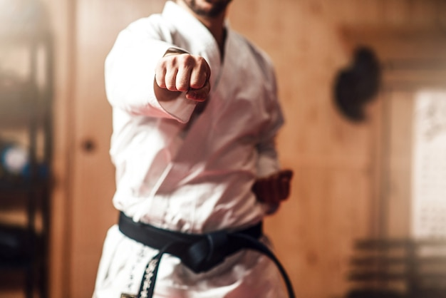 Martial arts master on fight training in gym Premium Photo