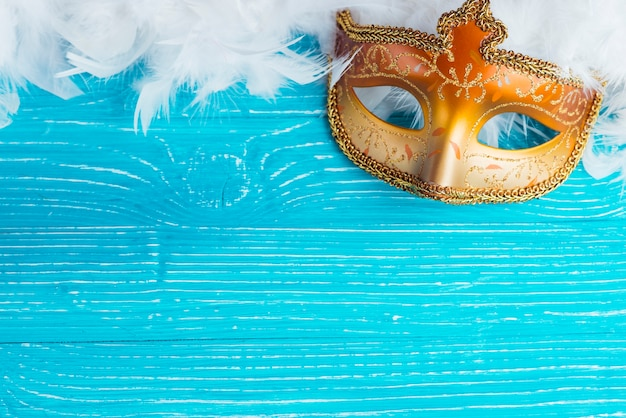 Mask and white feathers Free Photo