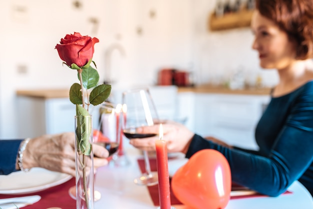 Mature couple having a romantic dinner at home for valentines day and doing toast with red wine Premium Photo