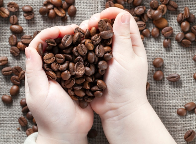 Mature roasted coffee beans in the palms Premium Photo