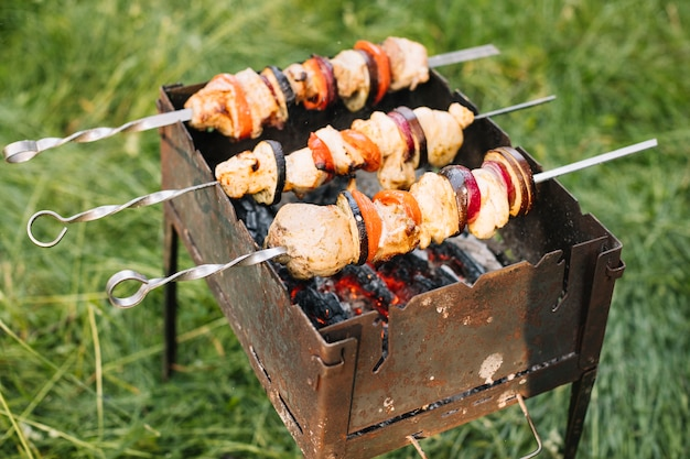 Meat on barbecue grill in nature Free Photo