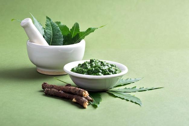 Лекарственные листья нима в ступке и пестик с пастой и веточками на зеленой поверхности Premium Фотографии