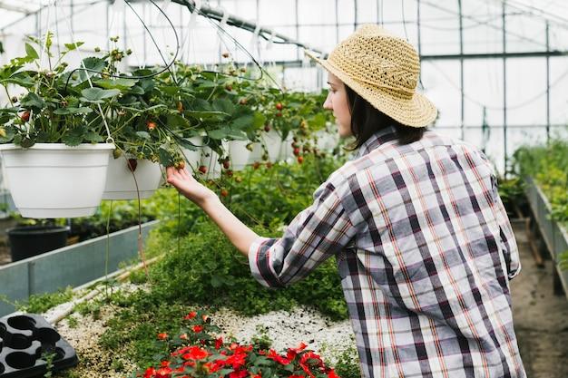 Medium shot woman looking at flowers Free Photo