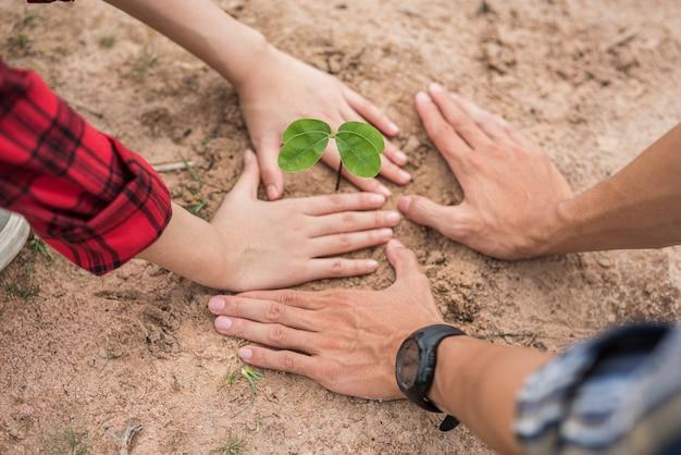 Men and women help grow trees. Free Photo