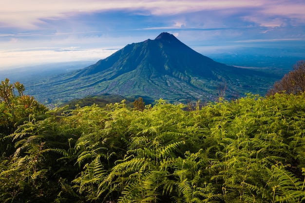 Вулкан мерапи снят с высоты. вид на гору мерапи Premium Фотографии