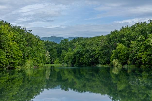 Scena affascinante della bellissima natura di zagabria riflessa sull'acqua Foto Gratuite