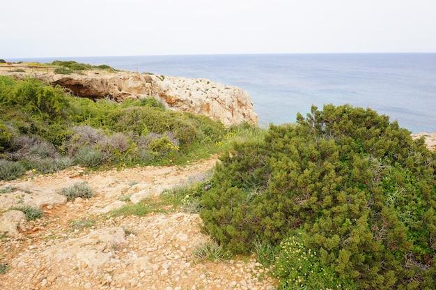 Завораживающий вид на спокойный океан со скалами и травой на берегу Бесплатные Фотографии