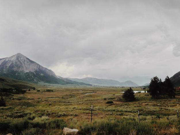 曇りの日の野原の山や木々の魅惑的な景色 無料写真