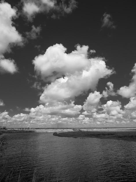 Affascinante vista sul fiume saint john in florida Foto Gratuite