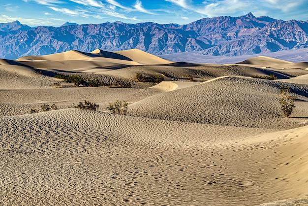 米国カリフォルニア州デスバレー国立公園のメスキートフラット砂丘 無料写真