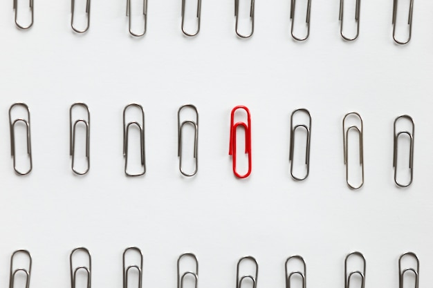 Metal paperclips in rows, one red different from the others Free Photo