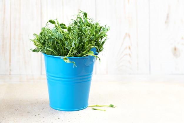 Микро зелень. ростки гороха нарезанные и готовые к употреблению Бесплатные Фотографии