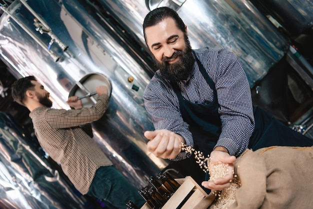 Microbrewery traditional craft man pours grains. Premium Photo