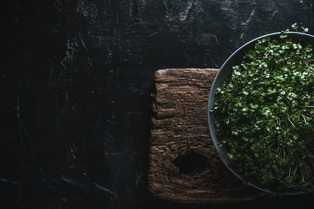 Microgreen in a gray dish on a wooden rustic Premium Photo