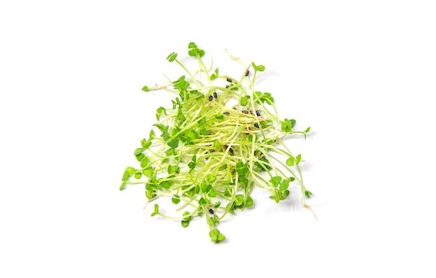 マイクログリーンバジルは、白い背景で分離します。セレクティブフォーカス。食物。 Premium写真