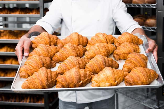 Mid section of a male baker hand's holding tray of croissant in the bakery Free Photo