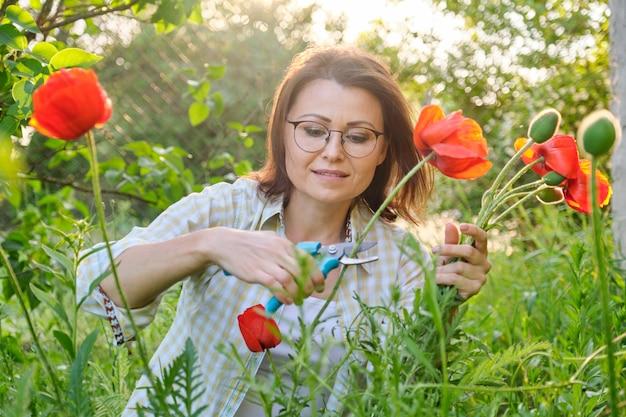 自然切断花赤いケシの中年女性 Premium写真