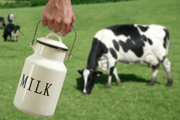 Milk pot farmer hand cow in meadow Premium Photo