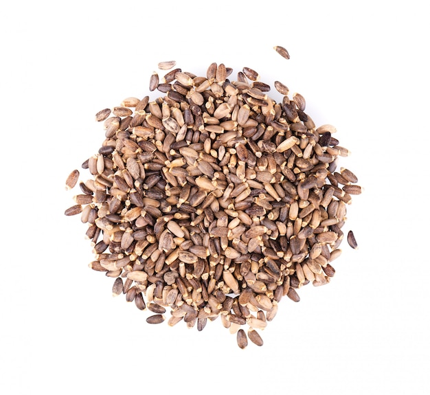 Milk thistle seed, isolated on white. silybum marianum, scotch thistle or marian thistle. close-up. top view. Premium Photo