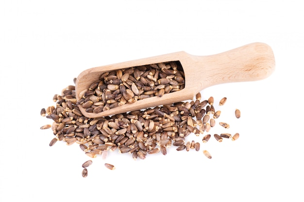 Milk thistle seed in a wooden spoon, isolated on white. silybum marianum, scotch thistle or marian thistle. close-up. Premium Photo