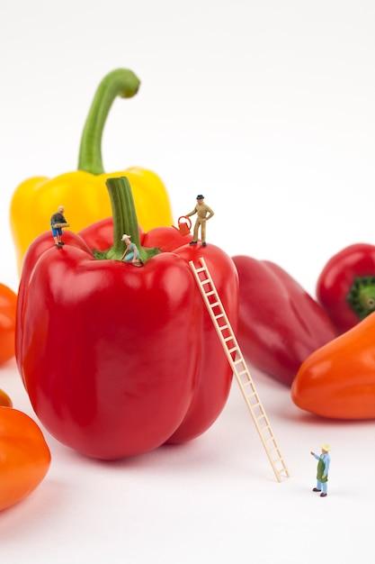 Miniature farmers harvesting bell pepper Premium Photo