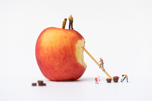 Miniature people, farmer climbing on the ladder for collecting red apples from big apple isolated Premium Photo