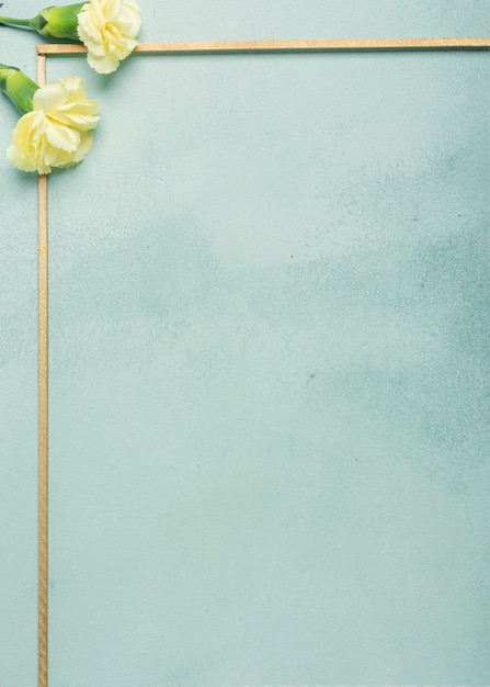 Minimalist frame with carnation flowers on blue background Free Photo