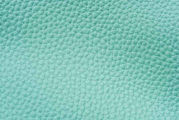 Mint green leather background Free Photo