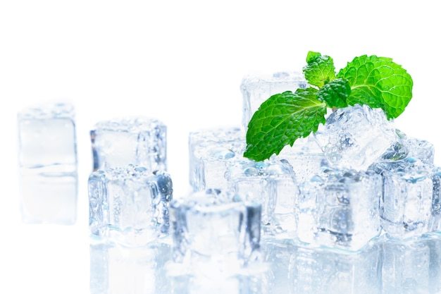 Mint leaves on ice cube isolated Premium Photo