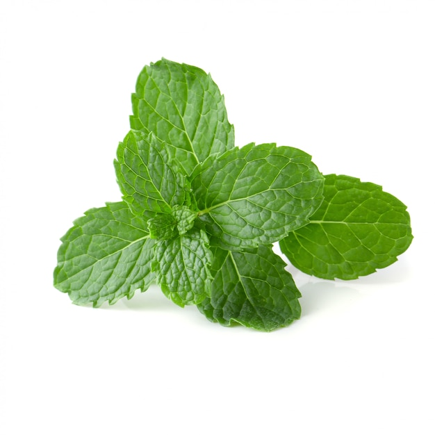 Mint leaves isolated over a white background. Premium Photo
