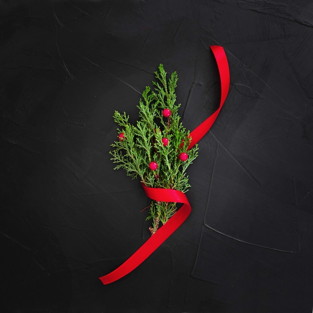 Mistletoe on a black background Free Photo