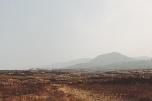 Foschia mattutina in un campo con le montagne sullo sfondo Foto Gratuite