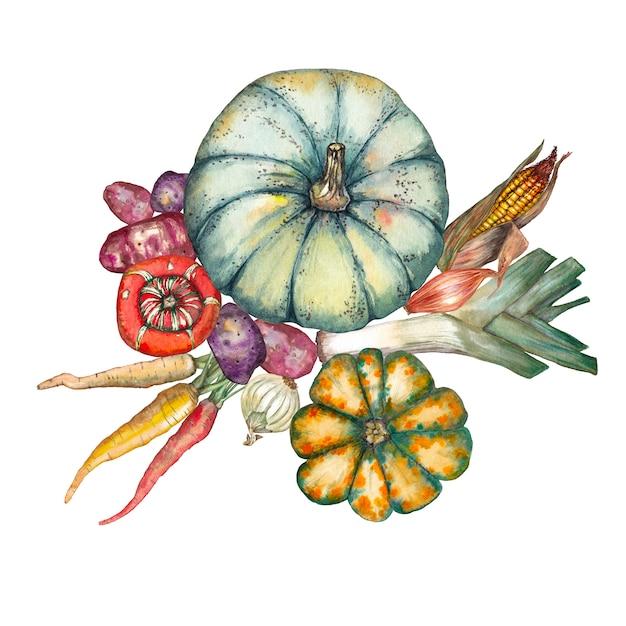 Mix of vegetables. pumpkins, corn, onion, carrot and potatoes.  watercolor illustration. Premium Photo