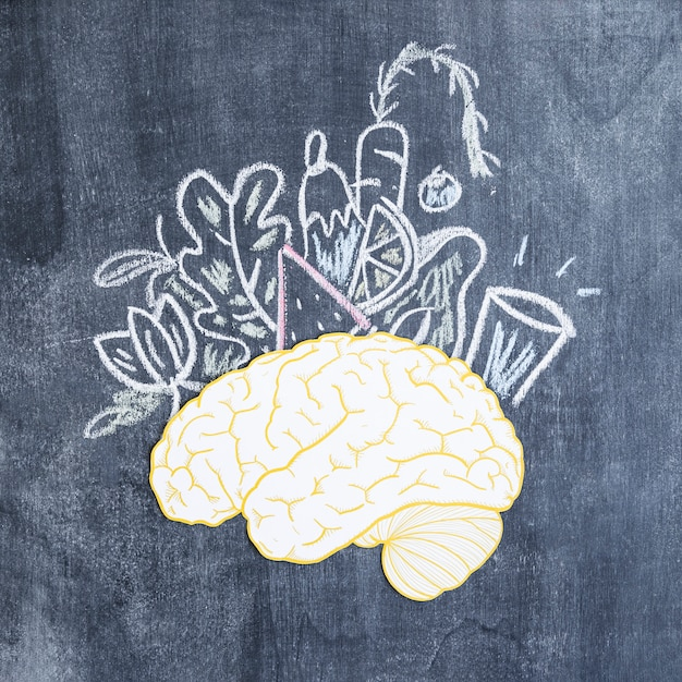 Mixed drawn vegetables over the paper cutout brain on chalkboard Free Photo