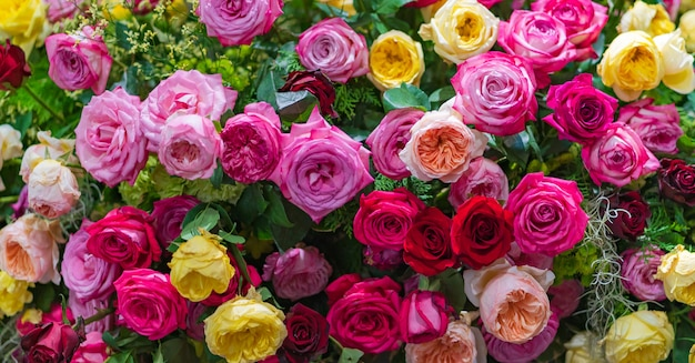 Mixed multi colored roses in floral decor, colorful wedding flowers background Premium Photo