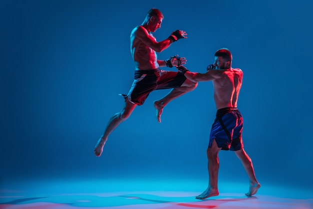 Mma. two professional fighters punching or boxing isolated on blue wall in neon Free Photo