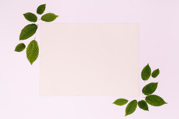 Mock-up frame card with leaves Free Photo