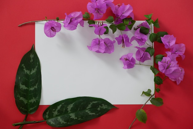 Mock-up white paper with space for text on red background and tropical leaves and flowers. Premium Photo